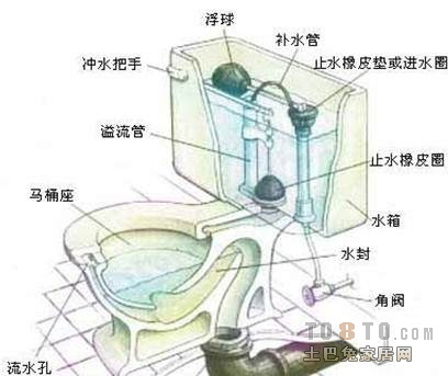 求一张坐式马桶结构图图片