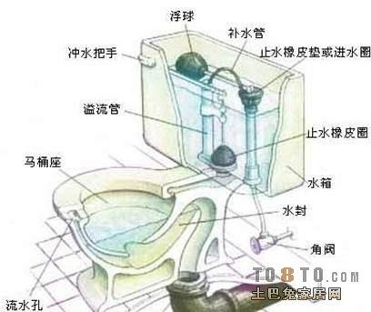 马桶的结构_虹吸式马桶结构图及解析
