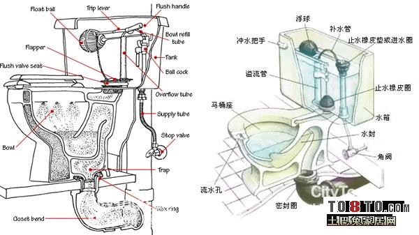 求张马桶内部的结构图?