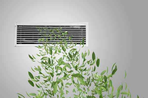 把森林氧吧搬回家,立邦原生植萃漆让家居更环保