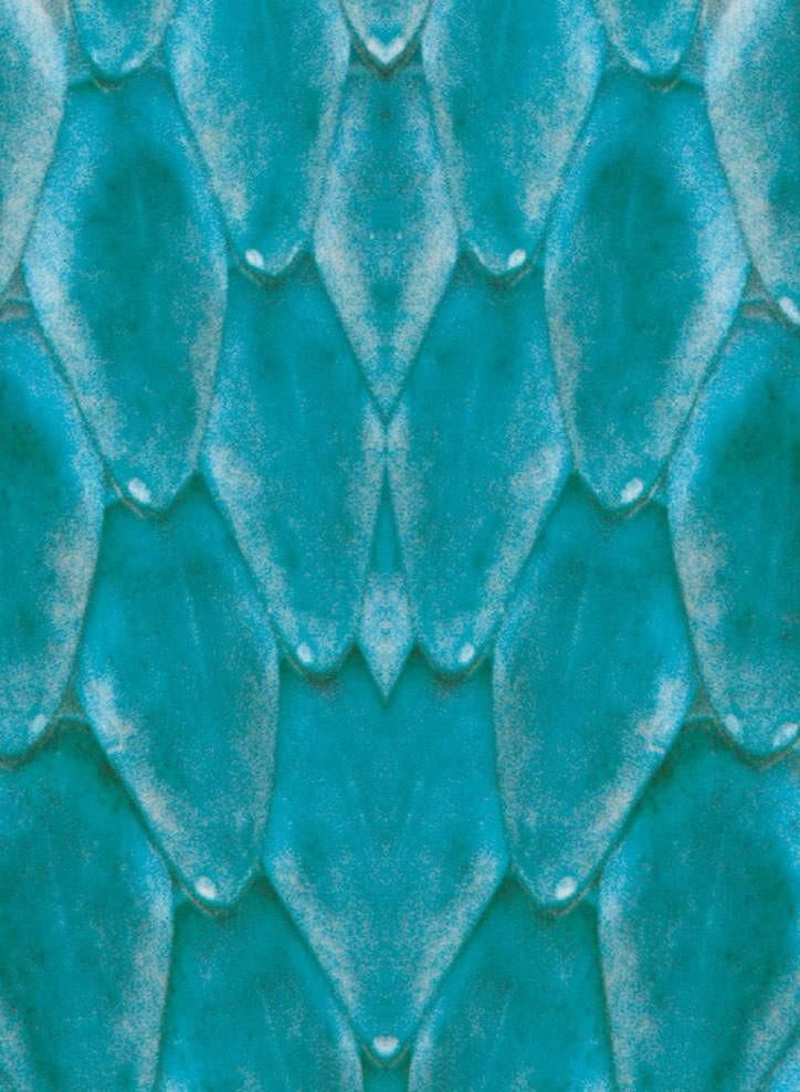 蛇纹图片材质-蛇纹素材贴图.3dmax材质