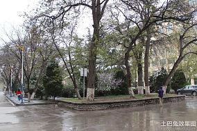 校园广场道路景观设计