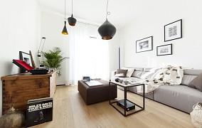 简约风清美纯净一居室效果图