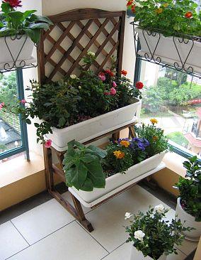 阳台植物景观设计