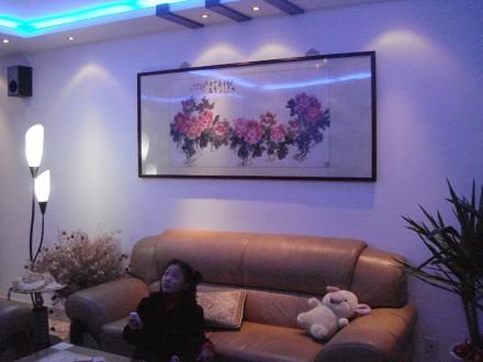 中海塞那丽舍客厅6图