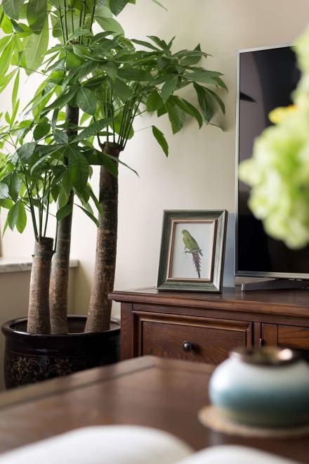 85平米两居室惊艳简美风归夷之美客厅1图