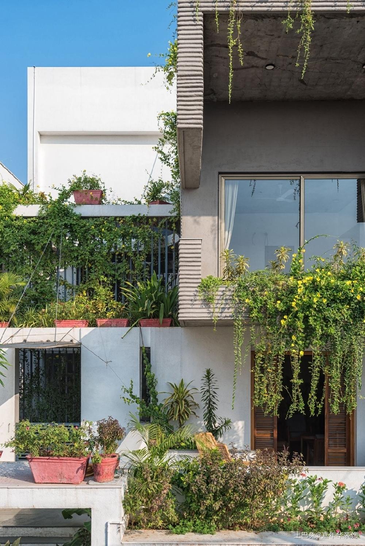 简约住宅农学家的家阳台其他阳台设计图片赏析