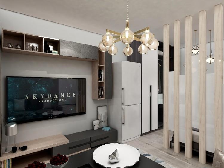 50平现代风格一室一厅