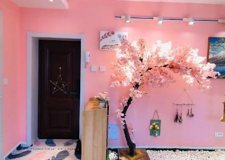 93平两室一厅公主粉装修客厅