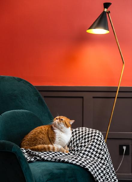 78平米现代风格,美到极致的家客厅5图