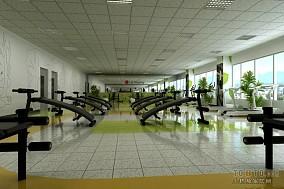 体育馆运动区结构设计