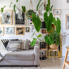 客厅设计图片赏析