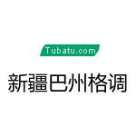 新疆巴州格调装饰有限公司 - 巴音郭楞装修公司