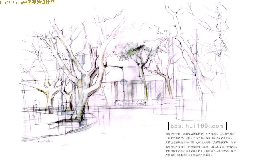 黑白树手绘贴图