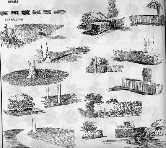 maya草地贴图 maya草地模型 maya制作草地 图说天下 惠高清图片